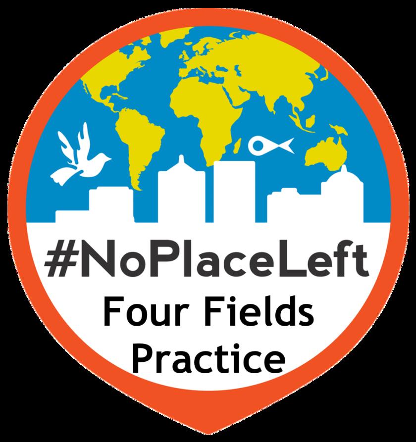 4 fields practice